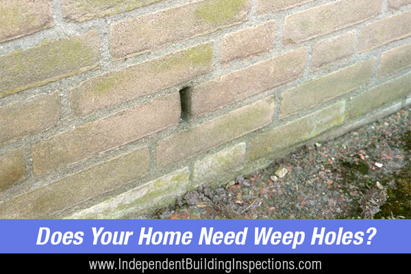 Blocked weep holes cause serious problems, which is why a pest and building inspector wants to see your weep holes, checking for ventilation and drainage issues